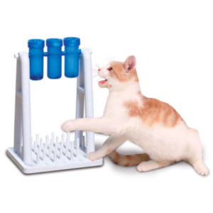 Cat Turn Around Aktivitetsspel 300x300