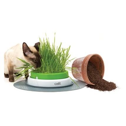 Catit Senses Grass Planter